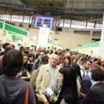 Feria Biocultura 2012