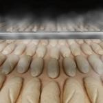 Noves eines per millorar la qualitat del pa