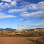 Cereals ecològics i de proximitat
